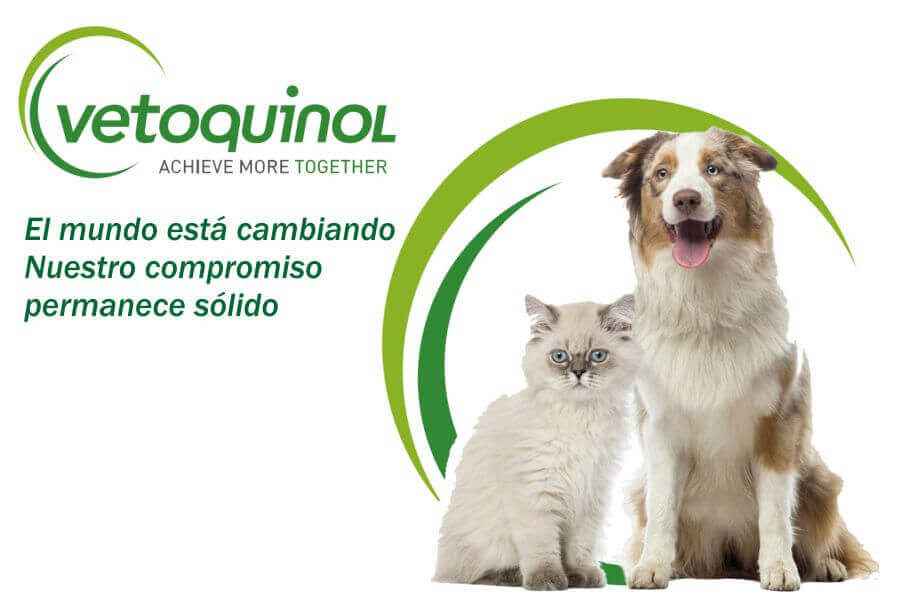 Vetoquinol al cuidado de tu mascota